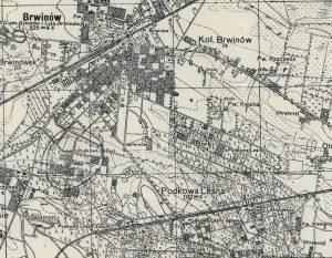 Borki w 1933 r.
